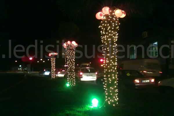Palmiye ağacı ışıklandırma